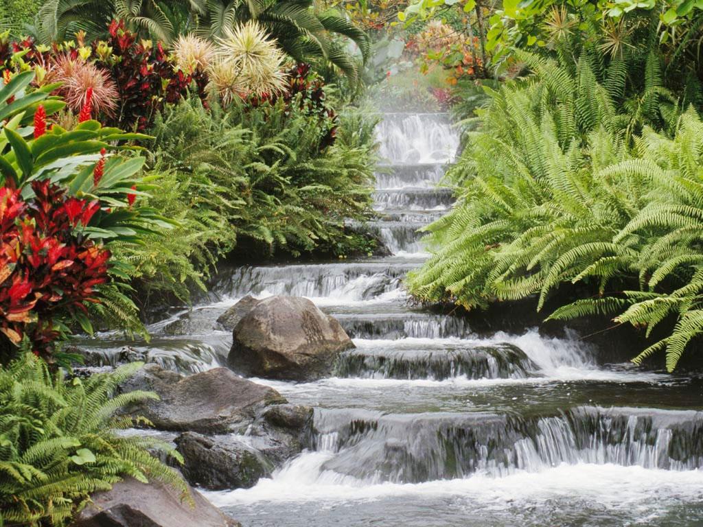 Infolettre La Minute Santé: L'eau