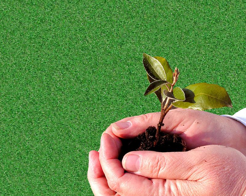 La Minute Santé: Conseils pour mieux jardiner